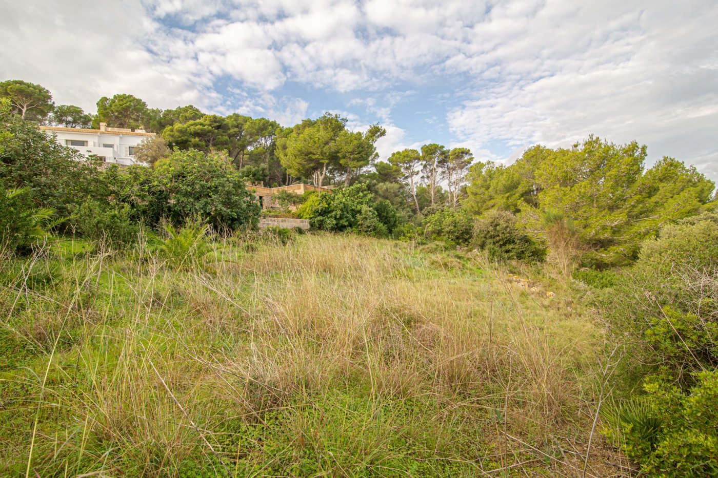 Ref:ES116528 Land For Sale in Capdepera