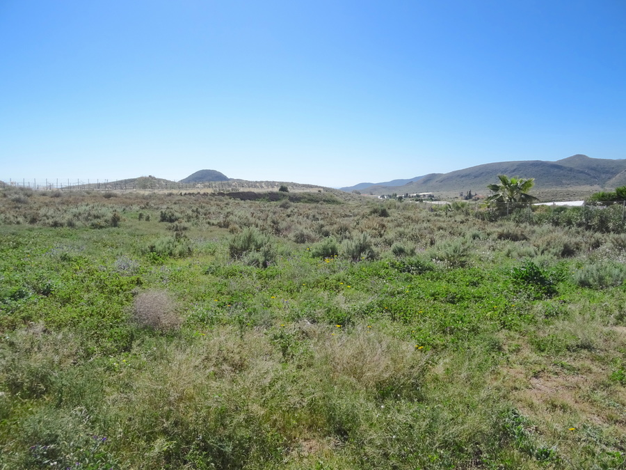 Ref:ES24960 Land For Sale in Pastrana