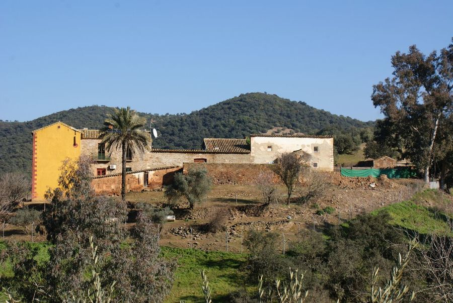 ES22008: country house for sale in Montoro